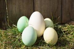Ovos da páscoa na frente de uma prancha de madeira Fotografia de Stock