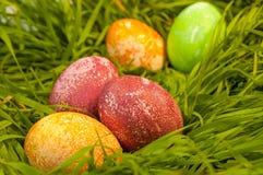 Ovos da páscoa na grama verde Fotografia de Stock