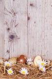 Ovos da páscoa na madeira Fotografia de Stock Royalty Free