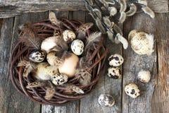 Ovos da páscoa na prancha de madeira Imagens de Stock