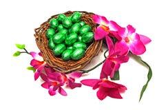 Ovos da páscoa com flor foto de stock