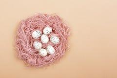 Ovos da páscoa no ninho cor-de-rosa foto de stock royalty free