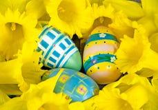 Ovos da páscoa no ninho do narciso amarelo fotos de stock