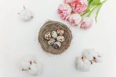 Ovos da páscoa no ninho e nas tulipas Fotos de Stock Royalty Free