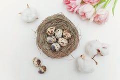 Ovos da páscoa no ninho e nas tulipas Imagens de Stock