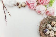 Ovos da páscoa no ninho e nas tulipas Foto de Stock