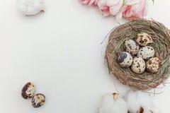 Ovos da páscoa no ninho e nas tulipas Foto de Stock Royalty Free