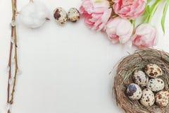 Ovos da páscoa no ninho e nas tulipas Fotografia de Stock