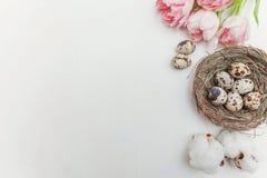 Ovos da páscoa no ninho e nas tulipas Imagens de Stock Royalty Free