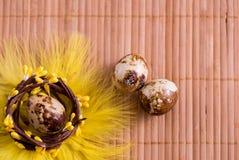 Ovos da páscoa no ninho no fundo de madeira da cor Da Páscoa vida ainda com flores, ninho, penas e ovos Foto de Stock