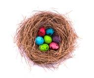 Ovos da páscoa no ninho pintado, isolado no fundo branco Ovos de codorniz coloridos Fotografia de Stock