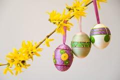 Ovos da páscoa no ramo Imagem de Stock
