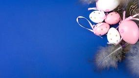 Ovos da páscoa no rosa e branco em um fundo azul decorado com penas e fitas imagens de stock