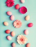 Ovos da páscoa pasteis e flores Foto de Stock Royalty Free