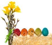 Ovos da páscoa pintados à mão com um ramalhete de narcisos amarelos das flores, Ca Fotografia de Stock
