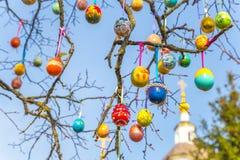Ovos da páscoa pintados em um ramo de árvore fotos de stock