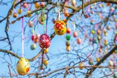 Ovos da páscoa pintados em um ramo de árvore imagens de stock