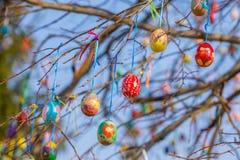 Ovos da páscoa pintados em um ramo de árvore fotografia de stock