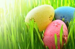 Ovos da páscoa pintados em uma grama verde em um prado Imagem de Stock