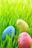 Ovos da páscoa pintados em uma grama verde em um prado Foto de Stock Royalty Free