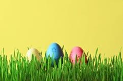 Ovos da páscoa pintados em uma grama verde em um prado Fotografia de Stock Royalty Free
