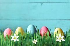 Ovos da páscoa pintados em uma grama verde em um prado e em flores Imagem de Stock
