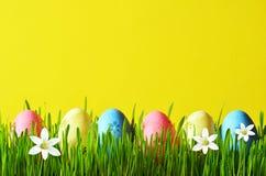 Ovos da páscoa pintados em uma grama verde em um prado e em flores Fotos de Stock Royalty Free
