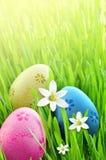 Ovos da páscoa pintados em uma grama verde em um prado e em flores Foto de Stock