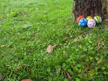 Ovos da páscoa pintados escondidos na grama atrás de um tronco de árvore Fotos de Stock Royalty Free