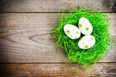 Ovos da páscoa pintados no fundo de madeira. Fotografia de Stock Royalty Free