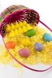 Ovos da páscoa, pintainhos e cesta coloridos Foto de Stock Royalty Free