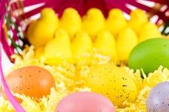 Ovos da páscoa, pintainhos e cesta coloridos Fotos de Stock Royalty Free