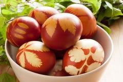 Ovos da páscoa tingidos com cascas da cebola, com um teste padrão de ervas frescas Fotografia de Stock