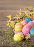 Ovos da páscoa tingidos por crianças ainda na vida rústica com as flores coloridas da forsítia da mola Imagens de Stock