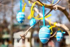 Ovos da páscoa que penduram em uma árvore Fotos de Stock Royalty Free