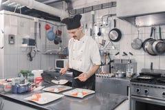 Ovos das placas das refeições do revestimento da bandeja do cozinheiro chefe fotos de stock