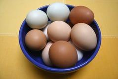 Ovos de Brown, azuis e brancos em uma bacia Imagens de Stock Royalty Free