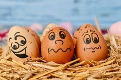 Ovos de Brown com caras engraçadas Foto de Stock Royalty Free