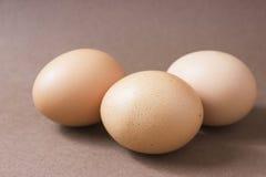 Ovos de Brown em um fundo marrom Foto de Stock Royalty Free