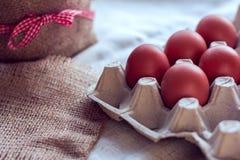 Ovos de Brown em um pacote Imagens de Stock