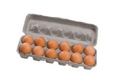 Ovos de Brown em um pacote da caixa Fotos de Stock