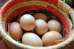 Ovos de Brown em uma cesta Imagens de Stock Royalty Free