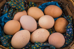 Ovos de Brown em uma cesta Foto de Stock