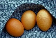 Ovos de Brown em uma parte de pano de lã cinzenta foto de stock royalty free