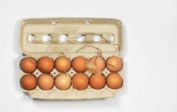 Ovos de Brown frescos da exploração agrícola com pena & palha Imagem de Stock