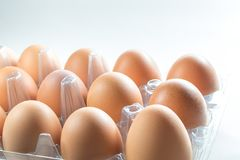 Ovos de Brown na bandeja Fotos de Stock