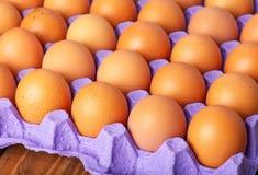 Ovos de Brown na bandeja de papel Fotos de Stock Royalty Free