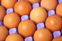 Ovos de Brown na bandeja de papel Imagens de Stock
