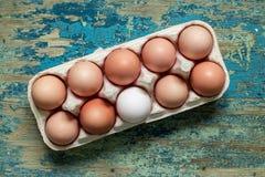 Ovos de Brown na bandeja separada na tabela de madeira Fotos de Stock