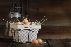 Ovos de Brown na cesta de fio Imagens de Stock Royalty Free